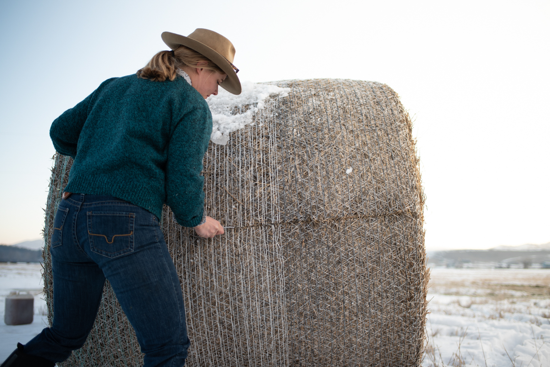Woman cuts open hay bale while feeding cattle on Montana ranch. Isaac Miller Photography  | Agriculture & Industry Photographer  |  Commercial & Editorial photography  |   Missoula + San Antonio